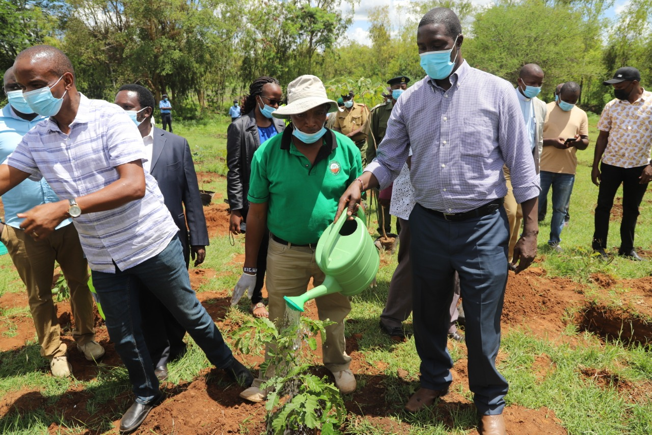 IGRTC Ag. Chairman during Tree Planting exercise at Kwanzambu Dam in Machakos county