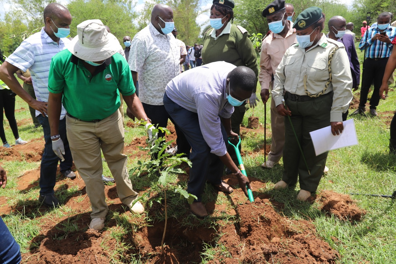 IGRTC Ag.Chairman during the Tree Planting exercise ahead of the 7th devolution conference slated for August 2021.